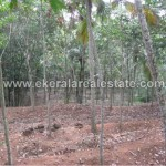 57 Cents Residential Land for Sale at Malayinkeezhu Trivandrum (1)