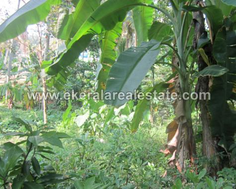7 Cents Residential Land for Sale Near Nedumangad Bus Stand Trivandrum (1)