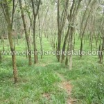 Above 1 Acre Land for Sale at Kattakada Trivandrum (1)
