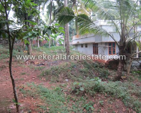Residential Land for Sale at Nedumangad, Trivandrum (1)