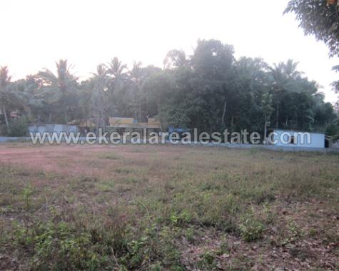 60 Cents Land for Sale at Nedumangad Trivandrum (1)