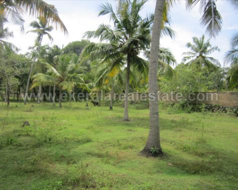 Land Ideal for Resort Investment Sale in Kazhakuttom - Trivandrum Properties