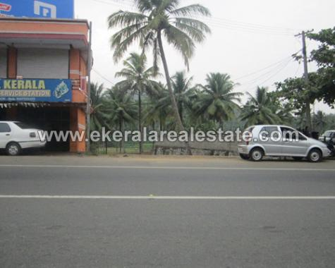 Land for Sale at Kilimanoor Pappala Trivandrum (1)