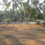 Residential Land for Sale at Nedumangad Trivandrum (1)