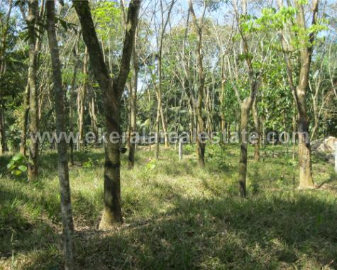 Residential Land for Sale at Vellanad Uriyacode Trivandrum (1)