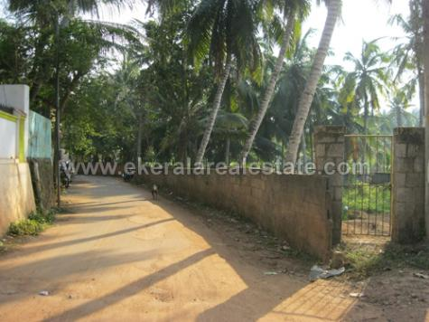 House Plots Sale in Thirumala Land sale in trivandrum House Plots in trivandrum for sale 2013 Low cost cheap land in trivandrum