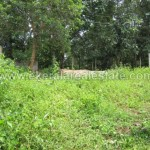 Mamom Attingal House Plots for Sale Land for Sale in Attingal