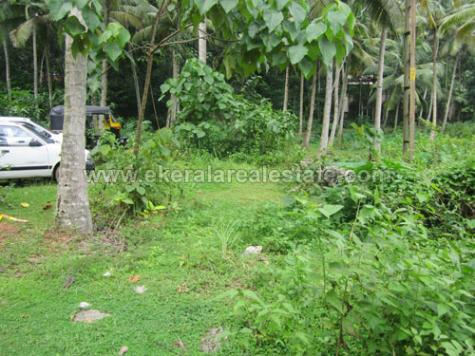 Palode Plavara 10 cents land for sale house plots for sale in Palode