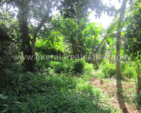 land for sale nearby Medical College trivandrum