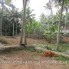 residential Land for Sale at Vettinad Vattappara Trivandrum