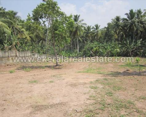 land for sale by owner Technopark