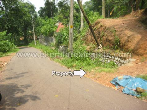 residential land for sale in Nedumangad