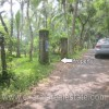 residential land for sale in Ooruttambalam
