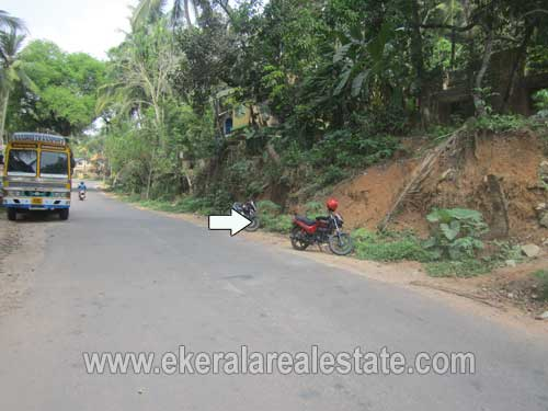 land available for sale in  kachani trivandrum kachani  Properties